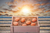 Fresh Eggs — Stock Photo