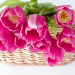 Bouquet of tulips in a wooden basket — Stock Photo #21987557