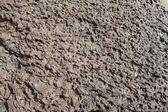 Taş pütürlü yüzeyi — Stok fotoğraf