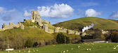 Corfe Castle — Stock Photo