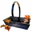 Garden Trug With Autumn Leaves — Lizenzfreies Foto