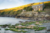 Port Quin in Cornwall — Stock Photo