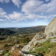 Dartmoor View — Photo