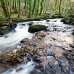 The River Par — Stock Photo #44282051