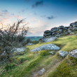 Windswept Tor — Stock Photo