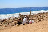 Bedouins — Stock Photo
