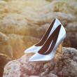 Постер, плакат: Silver High Heel Shoes