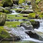 Mountain river — Stock Photo #51570181