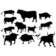 Stock Vector: Set of angry bulls