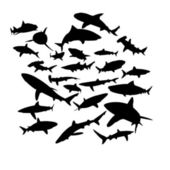 Nastavit kontury žraloků — Stock vektor