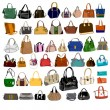 Set of fashion bags and purses — Stock Vector