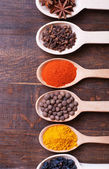 Spices — Photo