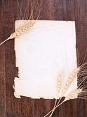 Paper & rye — Stock Photo