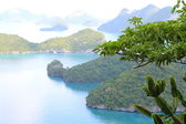 A group of islands with greenery in the foreground — Stock Photo
