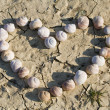 Snail in a heart shape — Stock Photo