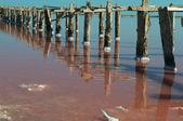 Vista do lago salgado — Foto Stock