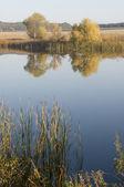 Melodia jesieni — Zdjęcie stockowe
