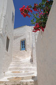 Picturesque Greek houses — Stock Photo