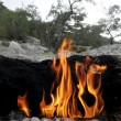 Fire on Mount Chimera — Stock Photo #36070599