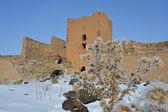 Fortress Ani - Turkey — Stock Photo