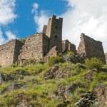 Mutso - fortress in Georgia — Stock Photo #40352583