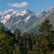 Постер, плакат: Caucasus Mountains