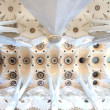 Ceiling of SagradFamilicathedral — Stock Photo #23030092