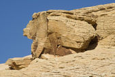Králík ve tvaru rock — Stock fotografie