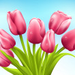Bunch of tulips on white background. Vector — Stock Vector