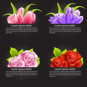 Set of colorful flower in banner — Stock Vector