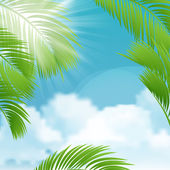 Beautiful view on sunny day with palm leaves. — Stock Vector