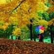 Autumn in central park, new york - Stock Photo