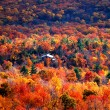 Autumn view at minnewaska state park, new york — Stock Photo