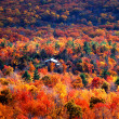 Autumn view at minnewaska state park, new york — Stock Photo #21605509