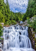 Cascading stream in Mt. Ranier National Park with sky — Stock Photo