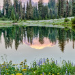 Mt Rainier reflection on Lake Tipsoo at sunrise, Washington — Stock Photo