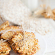 Cookies made ​​from oat flakes — Stock Photo