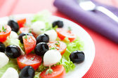 Nutritious salad with fresh tomatoes and mozzarella — Stock Photo