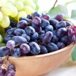 Blue grapes in a clay bowl — Stock Photo