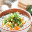 Fragrant vegetable soup — Stock Photo #19168375