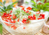 Cabbage salad with green and red pepper — Stock Photo