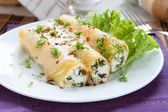 Italian cannelloni stuffed with spinach and cheese — Stock Photo