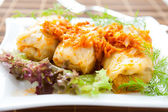Cabbage stuffed with rice and meat — Foto de Stock