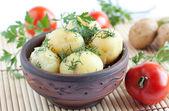 Potatoes in a ceramic bowl, handmade — Stock Photo