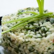 Risotto with spinach and greens closeup - Stock Photo