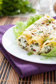 Pastry tubes with ricotta and spinach, cannelloni — Stock Photo
