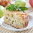 Piece apple pie on the background of apples — Stock Photo #21584435