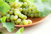 Clusters of muscat grapes on a plate — Stock Photo