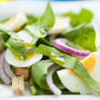 Lightweight spring salad with spinach and egg — Stock Photo