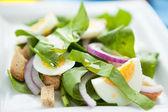 Lichtgewicht voorjaar salade met spinazie en ei — Stockfoto